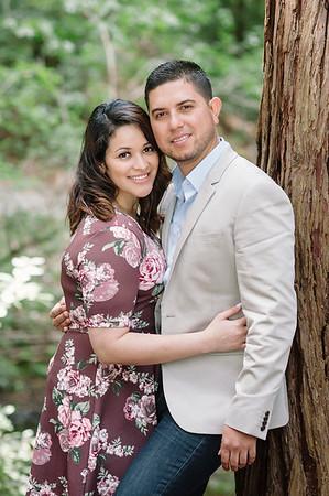 Eric & Brenda Engagement