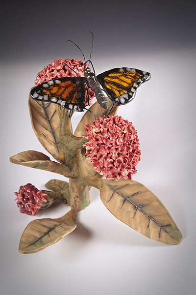 sn 398.  Monarch Butterfly on Milkweed
