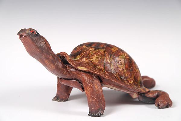 sn 378   Eastern Box Turtle