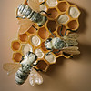 312. Bees and Honeycomb