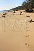 FL JACKSONVILLE BIG TALBOT ISLAND STATE PARK BONEYARD BEACH APRAB_MG_6011MMW