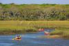 FL JACKSONVILLE BIG TALBOT ISLAND STATE PARK LITTLE TALBOT ISLAND STATE PARK APRAB_MG_6066MMW