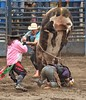 Bull riding 3455c