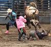 Bull riding 3456cc