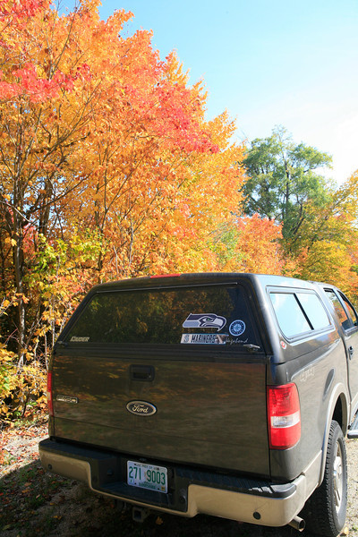 Along the Kancamagus Highway, NH (Showing my home colors...)  :)