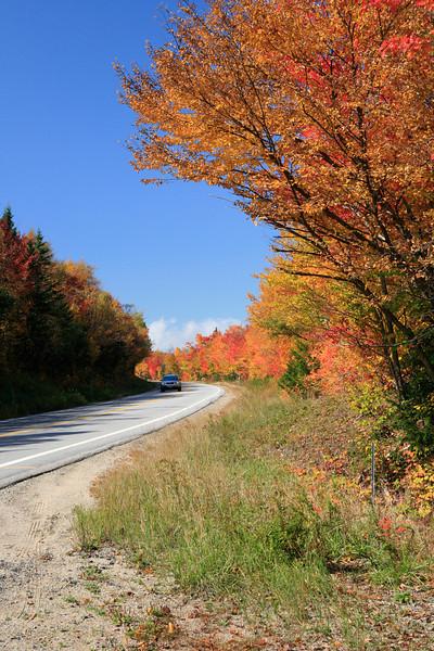 Along the Kancamagus Highway, NH