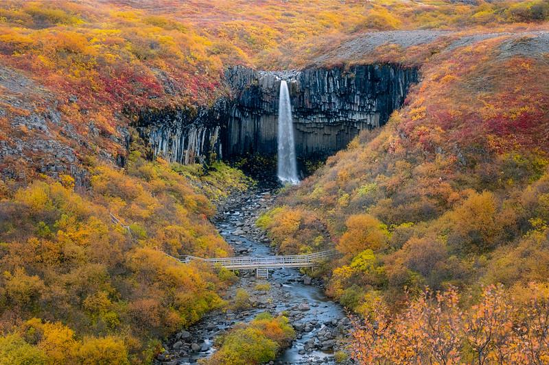 Fall at Svartifoss
