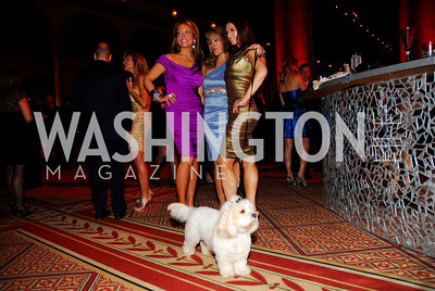 Andrea Rinaldi,Michelle Benham,Nina Snow,Fashion for Paws,April 9,2011,Kyle Samperton