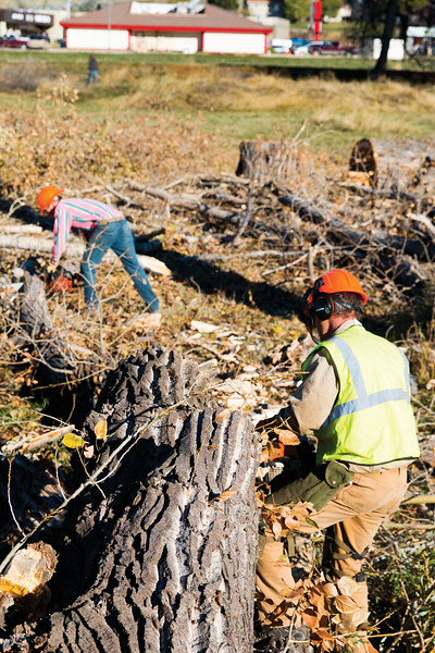 Matthew Gaston | The Sheridan Press<br>Joseph Decker, right, and Alex Kollekowski clear branches from a felled tree before starting in on the trunk Tuesday, Oct. 16, 2018.