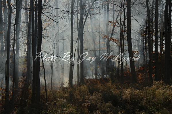 Leicester ~ Cuylerville FD's - Brush Fire - 4939 Brian Rd - November 14, 2016