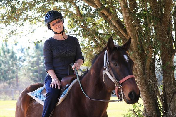 Horse-N-Around