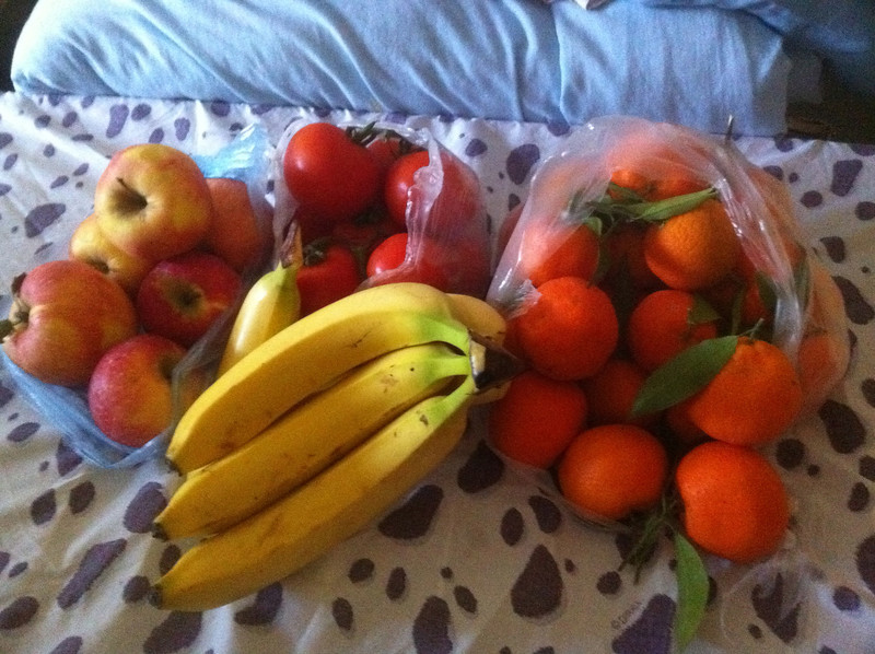 Deb went on her first trip to the farmers market without me. Sarah went with her to show her some of the people we have been buying things from. This collection of good stuff was a total of $8.00. The mini-oranges are the best.