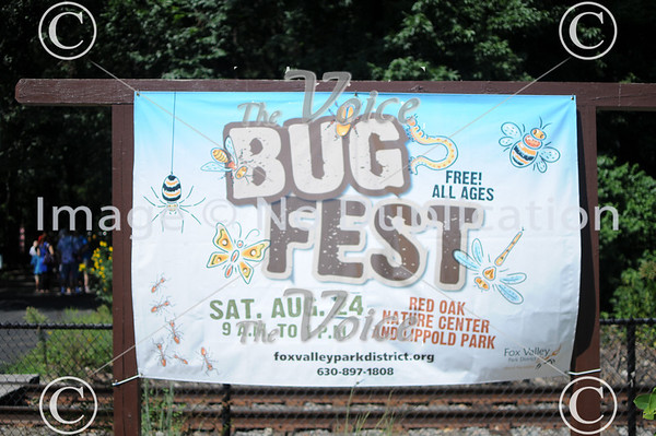 Fox Valley Park District Bug Fest at Red Oak Nature Center in North Aurora, Ill 8-24-13