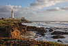 Pigeon Point Lighthouse and Iceplants Before Sunset