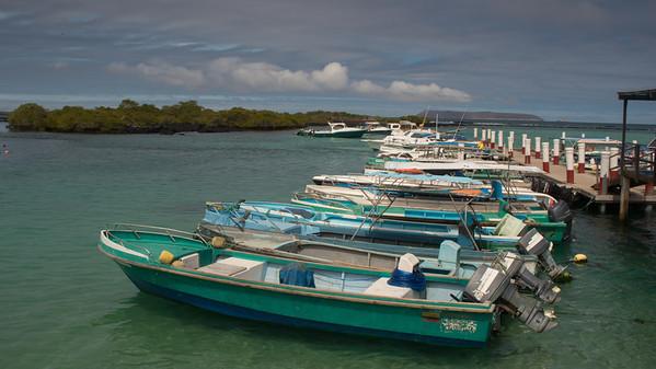 Puerto Villamil, Isabela Is. Galápagos.