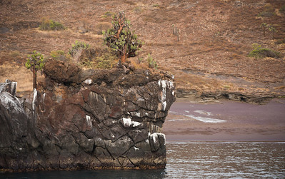 Buccaneer Cove, Santiago Is. Galápagos.