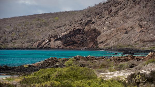 Floriana Is. Galápagos.