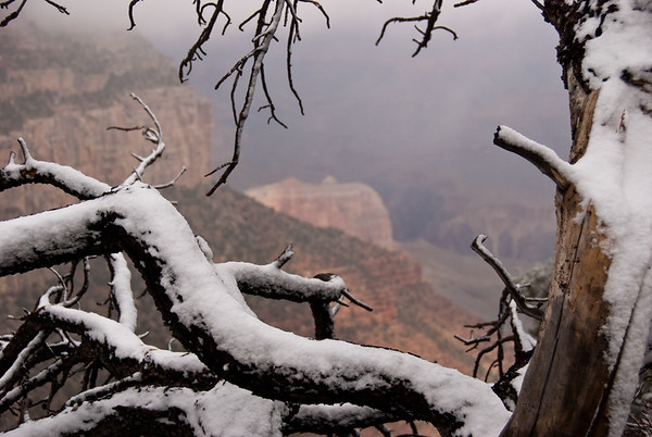 Snow at the South Rim