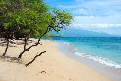 Paradise IV