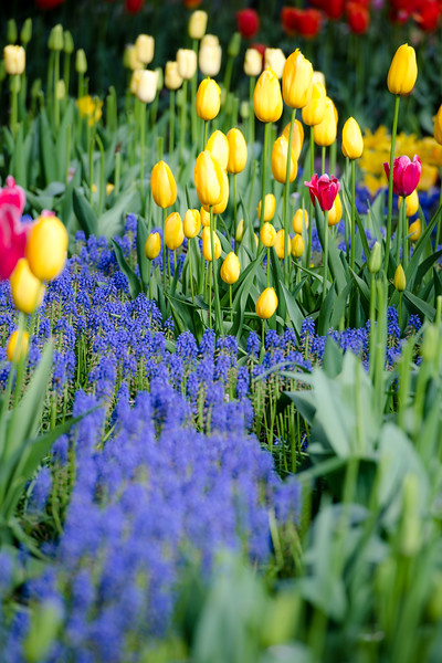 Friendship II