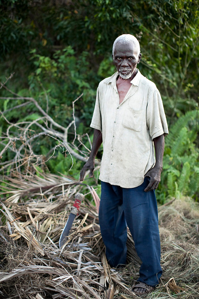 A man with machette close by cuts the leaves off of roots recently torn from the ground in the hills above Petionville, Haiti. The man looks after a home nearby that has been foreclosed upon, and uses its land in the mean time to try and sustain crops.