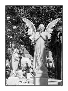 La Habana_080510_MG_1926