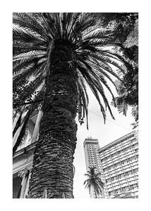 Habana_210718_DSC9555 copia
