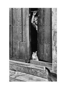 Cuba_Havana_people_IMG_5921