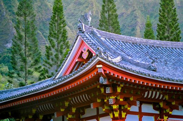 shrine roof-2