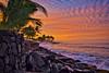 Hawaii Landscapes :