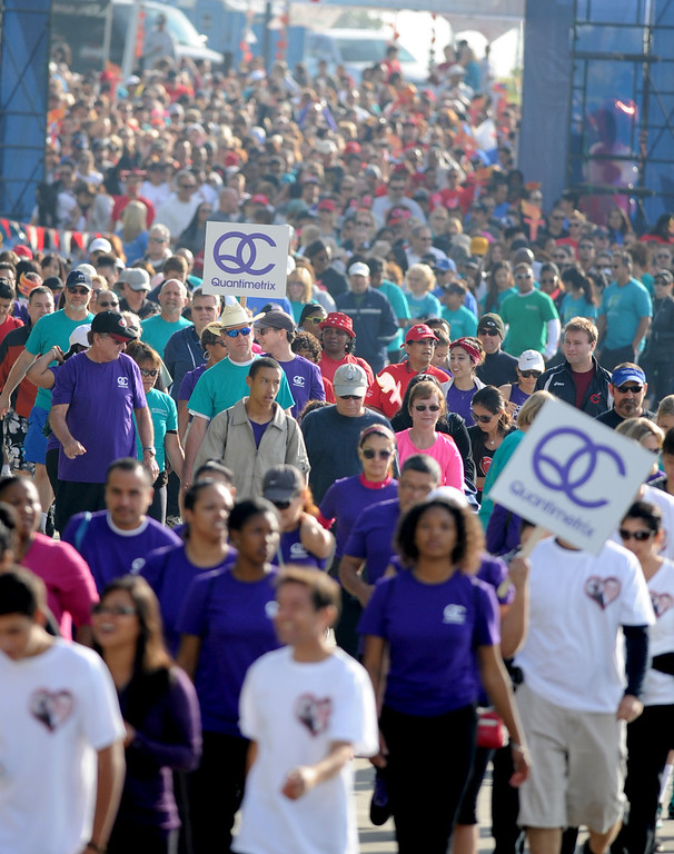. A sea of walkers heads out for the Greater Los Angeles Heart Walk at Rainbow Lagoon Park in Long Beach , CA. on Sunday, November 10, 2013. (Photo by Sean Hiller/Press Telegram).