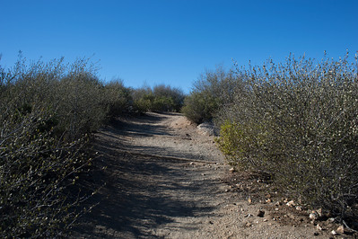 Hellhole Canyon-8511