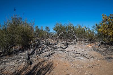 Hellhole Canyon-8508