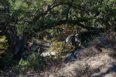 Hellhole Canyon-8528