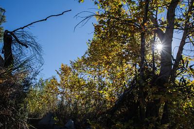 Hellhole Canyon-8525