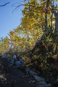 Hellhole Canyon-8523
