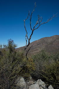 Hellhole Canyon-8515