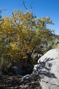 Hellhole Canyon-8521