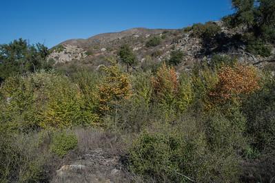 Hellhole Canyon-8519
