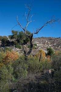 Hellhole Canyon-8518