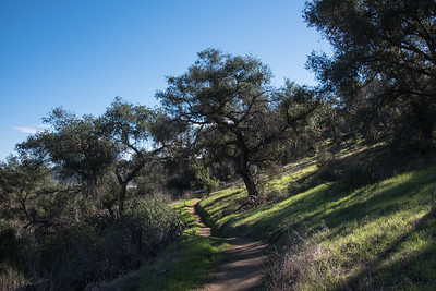 2016Highland Valley Trail-DSC_5978