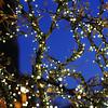 holidaylights_0018
