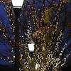 holidaylights_0022