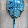 sn709.  Turquoise Crackle Raku.
