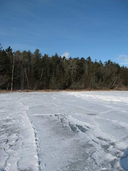 07 Ice and treeline