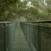 Illawarra fly walkways