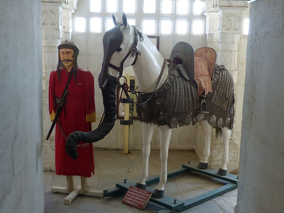 The trunk on the horse was put on strategically. THis way the elephants would not trample on the horse, thinking it was a small Baby elephant.