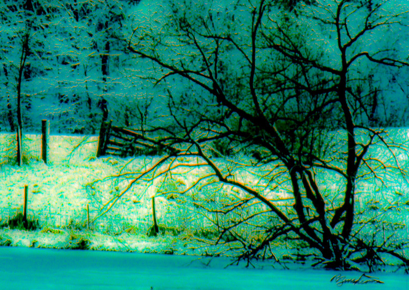frozen-pond-2