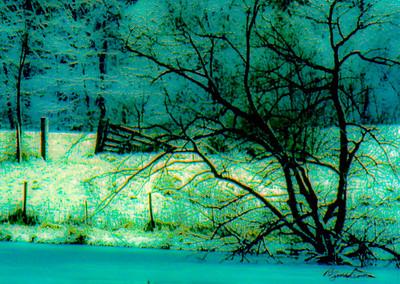 frozen-pond-2
