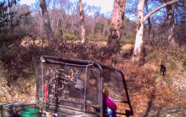 creek-work-2